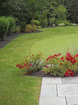 Lexington Garden Design